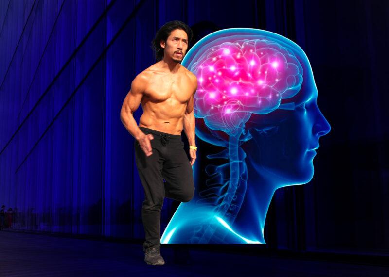 Le rôle des hormones dans le SPORT